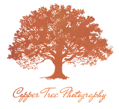Copper Tree Photography logo